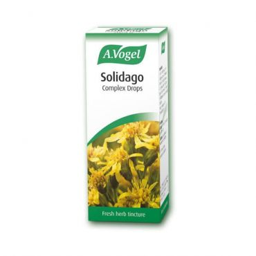 A.Vogel Solidago (Nephrosolid) 50ml - Συμπληρώματα Διατροφής στο Pharmeden.gr - Online Φαρμακείο